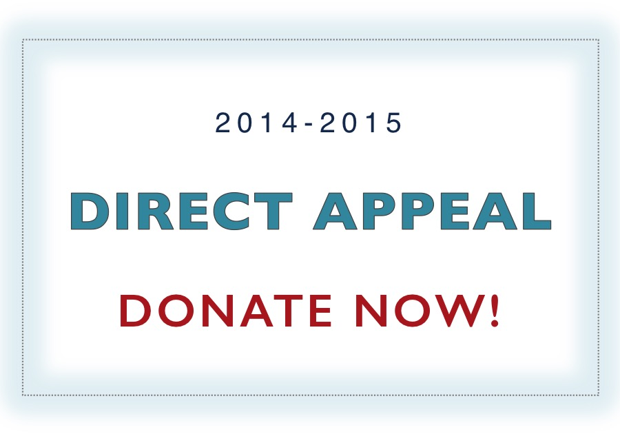 2015 DA DONATE NOW Homepage